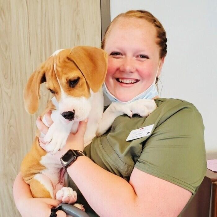Amber </br>  Veterinary Assistant photo