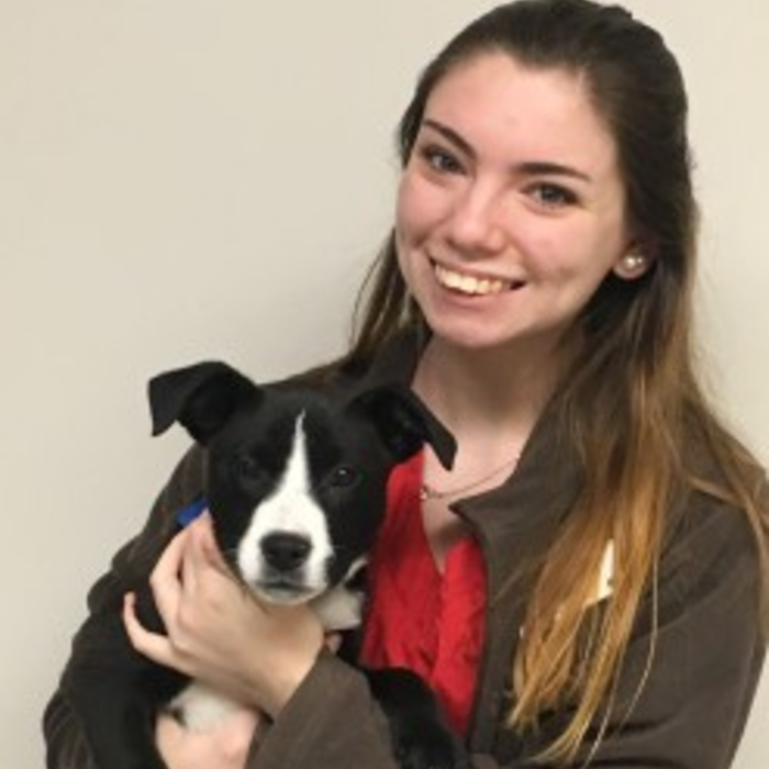 Miranda </br>Veterinary Assistant photo